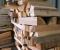 Restauration d'une roue à augets et installation d'un système de production d'électricité - En atelier 5