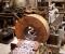 Restauration d'une roue dans l'indre - En atelier 1