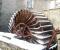 Conception et installation d'un ensemble roue et système de production d'électricité - La roue tourne 14