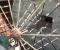 Restauration d'une roue de poitrine en Lozère - La roue tourne 11