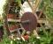 Restauration d'une roue à goitre rarissime - La roue terminée 13