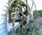Restauration d'une grande roue de poitrine en Normandie - Avant travaux 1