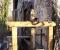 Restauration d'une grande roue de poitrine en Normandie - Les vannages 2