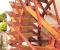 Restauration d'une roue Sagebien - Pour le plaisir 10