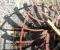 Restauration d'une très belle roue Zuppinger du XIXème - Montage des coyaux et des aubes 5