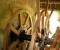 Restauration d'une roue type Poncelet - Montage des coyaux et des aubes 3